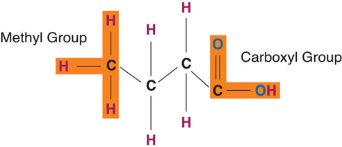 Methyl and Carboxyl group chemical structure