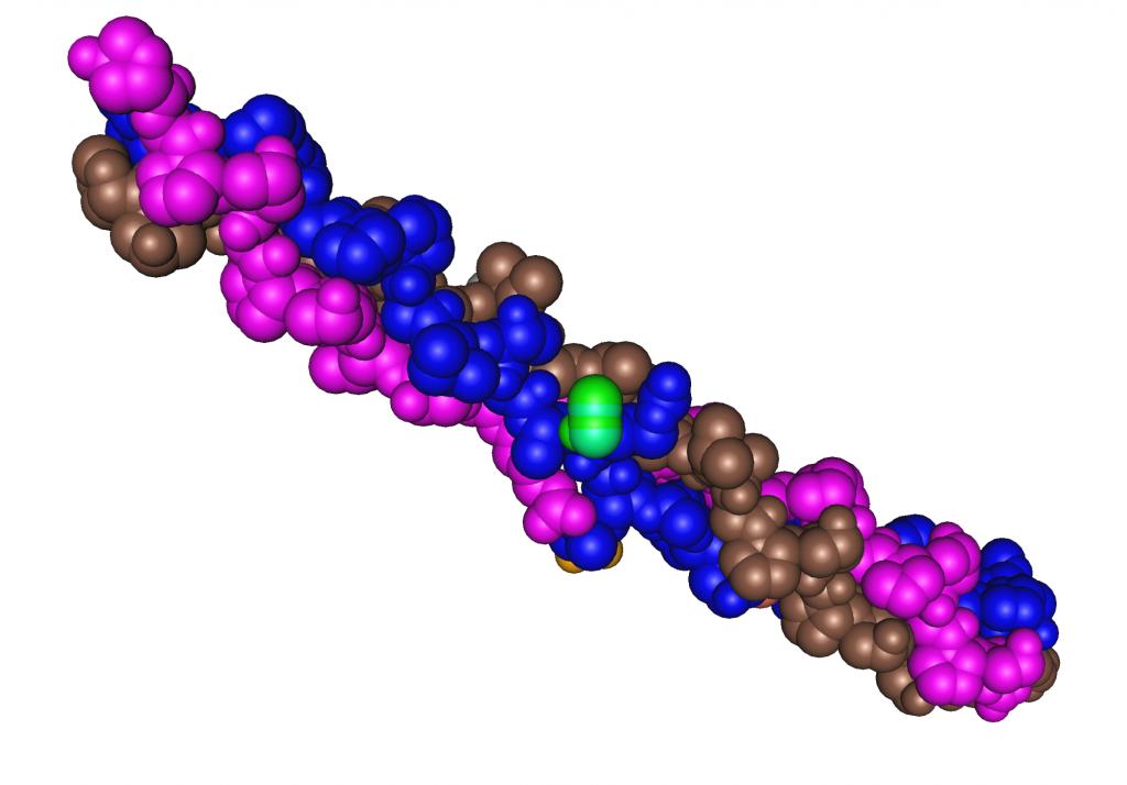 Collagen triple helix protein 3d rendering
