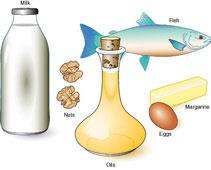 Fish, oil, nuts, milk