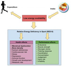 Diagram showing energy availability and health/performance effects