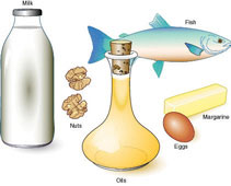 Illustration of assorted foods that are high in Omega 3 fats: milk, walnuts, oil, eggs, margarine