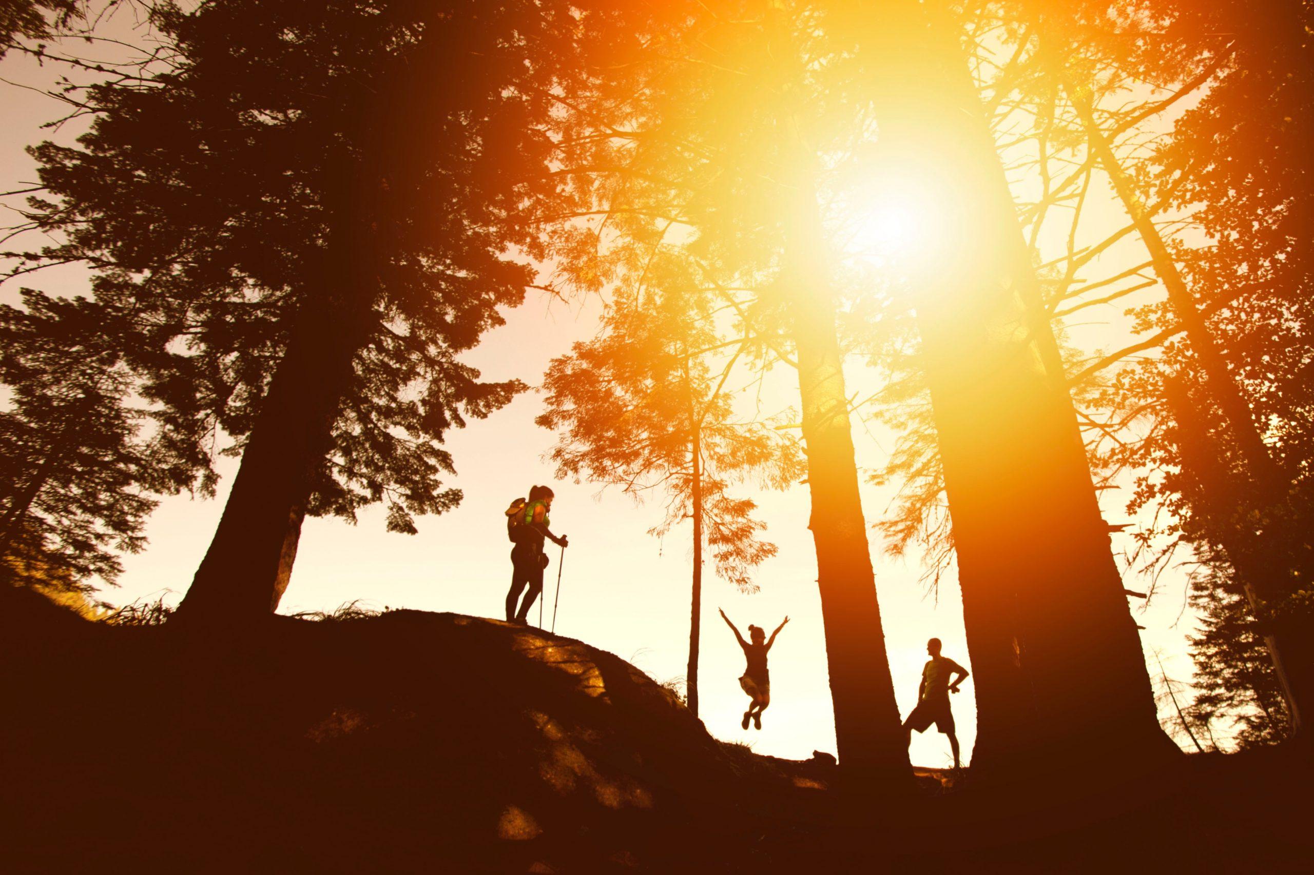 Silohuette of Three People Hiking