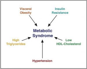 Metabolic Syndrome: A Combination of Risk Factors Increasing the Chances for Chronic Disease