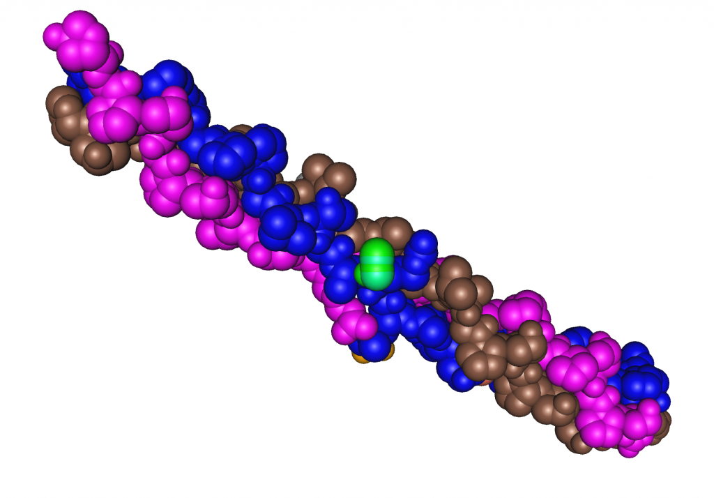 3D rendering of collagen triple helix protein