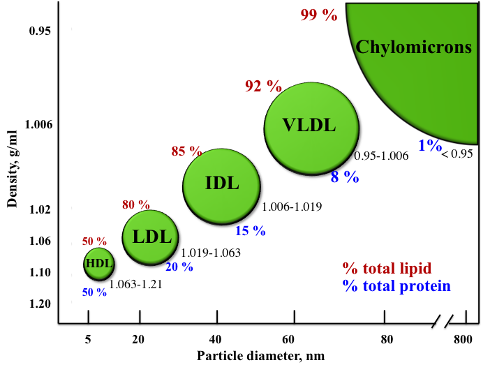 A graph showing the major types of lipoproteins based on their densities. Density range is shown as well as total lipid (TL) and total protein (TP) content. 1. HDL TL50% + TP50%, 2. LDL TL80%+TP20%, 3. IDL TL85%+TP15%, 4. VLDL, TL92%+TP8%, 5. Chylomicrons TL99%+TL1%.